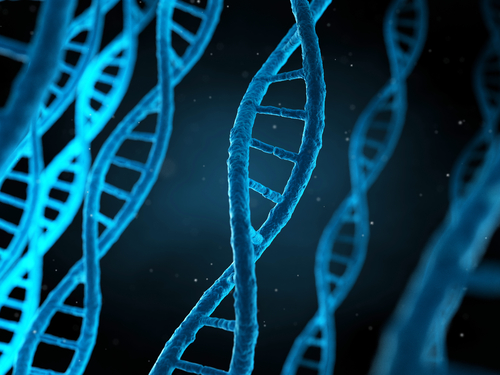 Study Finds Link Between Genetic Mutation and Melanoma Progression