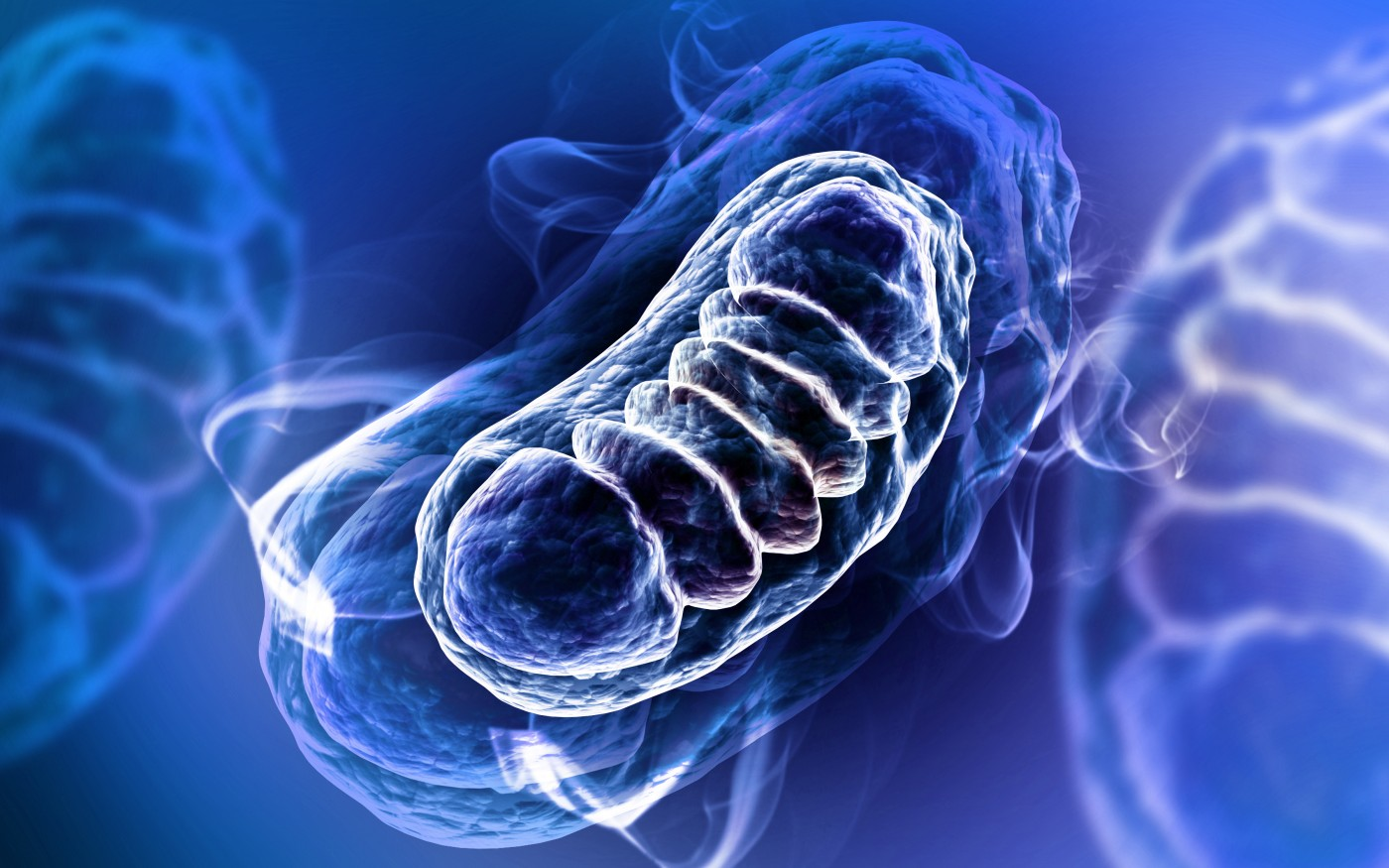 Melanoma Pigmentation Linked to Mitochondrial ROS Levels